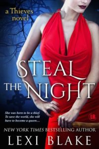 Steal the Night epub