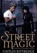 Street Magic epub