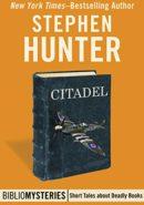 Citadel epub
